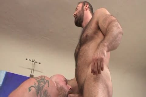 hairy Daddies On The bed